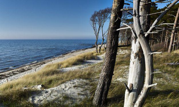 Darßer Weststrand – Fischland-Darß-Zingst